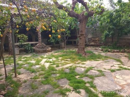 imagen 1 de Venta de chalet con jardín en Riudoms (Tarragona)