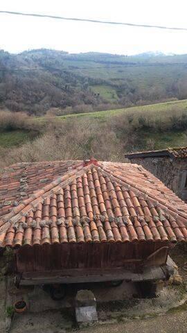 imagen 3 de Venta de casa rural en la montaña en Linares (Asturias)