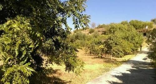 imagen 1 de Venta de casa rural con terreno en Marbella