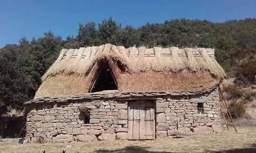 imagen 4 de Venta de granja ecológica con vivienda en Santa Cruz de La Seros  (Huesca)