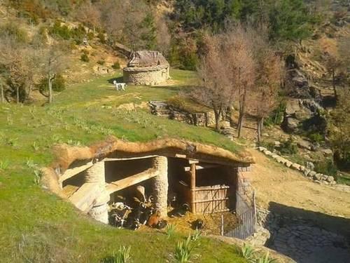 imagen 5 de Venta de granja ecológica con vivienda en Santa Cruz de La Seros  (Huesca)
