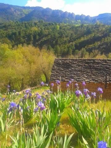 imagen 7 de Venta de granja ecológica con vivienda en Santa Cruz de La Seros  (Huesca)