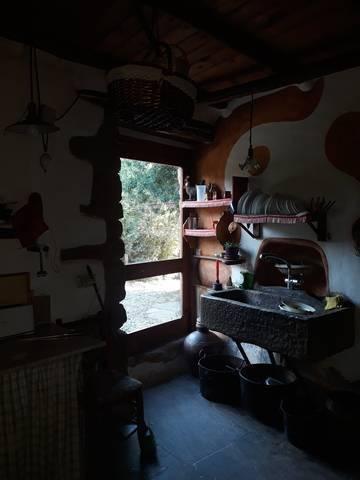 imagen 2 de Venta de granja ecológica con vivienda en Santa Cruz de La Seros  (Huesca)