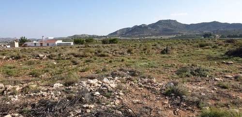 imagen 1 de Venta de casa con bodega en Novelda (Alicante)