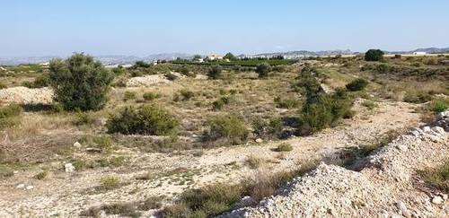 imagen 2 de Venta de casa con bodega en Novelda (Alicante)