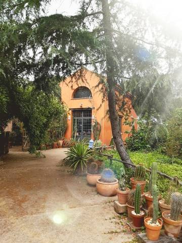 imagen 1 de Venta de finca de recreo en Lepe (Huelva)