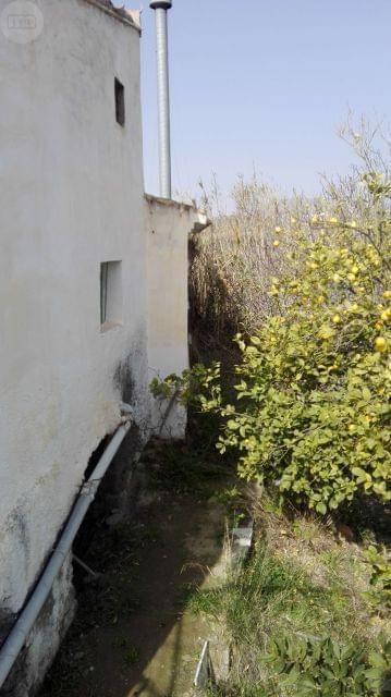 imagen 3 de Venta de cortijo con bodega en Purchena (Almería)