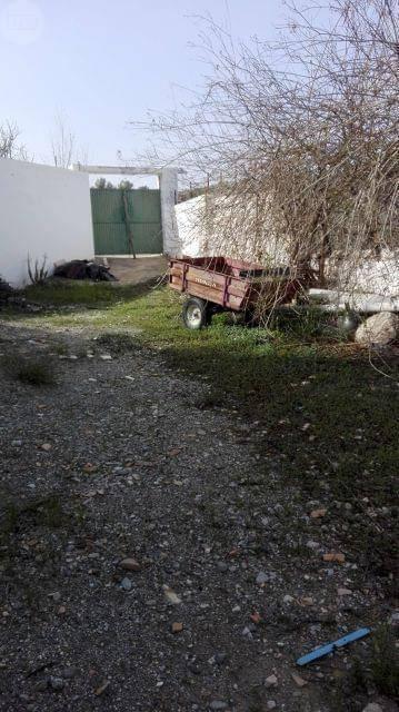 imagen 5 de Venta de cortijo con bodega en Purchena (Almería)