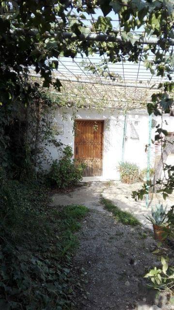 imagen 7 de Venta de cortijo con bodega en Purchena (Almería)