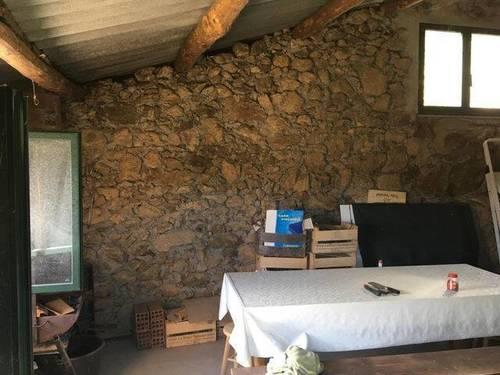 imagen 4 de Venta de viña con bodega en Escarión (Lugo)