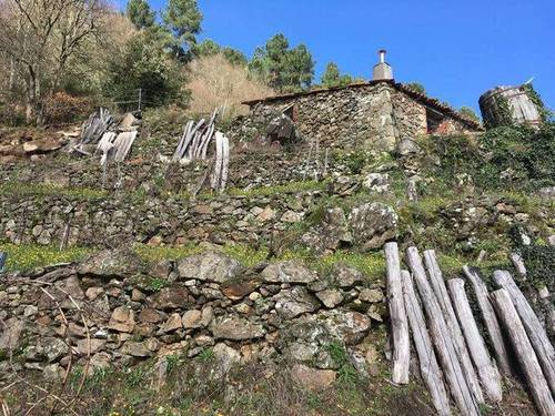 imagen 7 de Venta de viña con bodega en Escarión (Lugo)