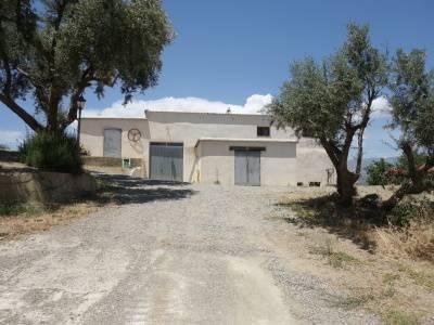 imagen 4 de Venta de bodega ecológica con vivienda en Lobras (Granada)