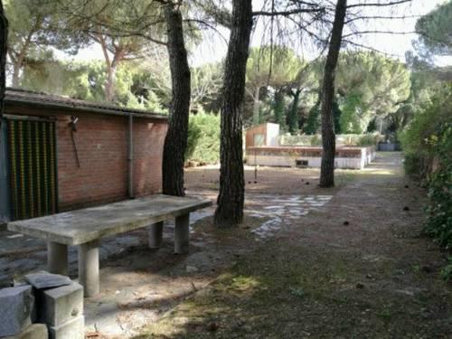 imagen 2 de Venta de finca de recreo en Tudela de Duero