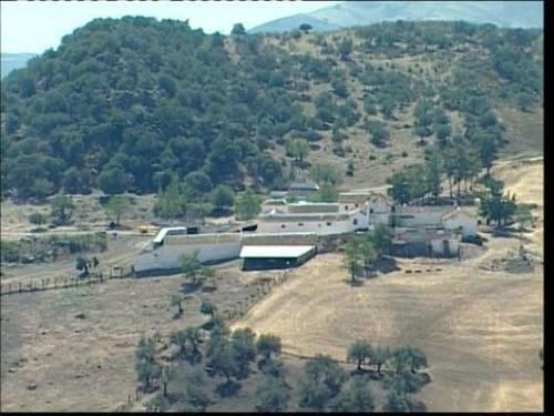 imagen 2 de Venta de finca con almazara y ermita antigua