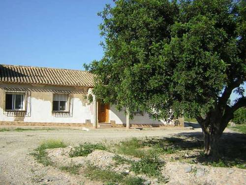 imagen 7 de Venta de tres casas de campo en Casas de Tallante (Murcia)