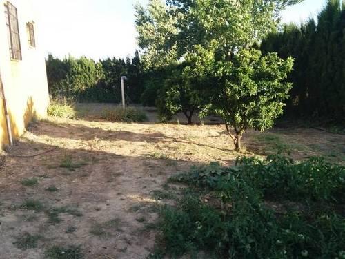 imagen 2 de Venta de casa de campo con olivos en Bailén