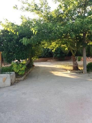 imagen 3 de Venta de casa de campo con olivos en Bailén