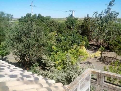 imagen 5 de Venta de casa de rural en Herencia (Ciudad Real)