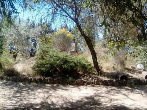 imagen 4 de Venta de casa de rural en Herencia (Ciudad Real)