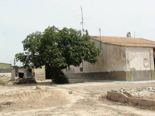 imagen 3 de Venta de casa rural en Elche (Alicante)