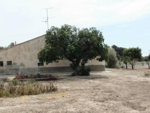 imagen 4 de Venta de casa rural en Elche (Alicante)
