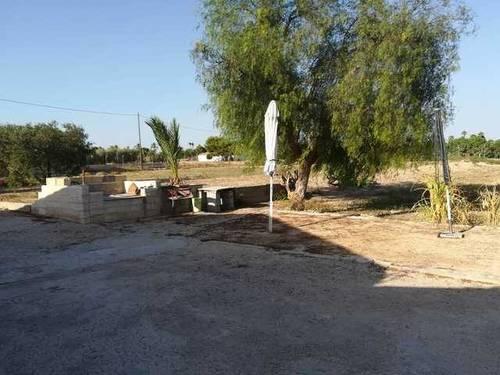 imagen 3 de Venta de finca rústica con casa de campo en Elche
