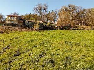 imagen 2 de Venta de casa rural en  A Peroxa