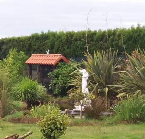 imagen 2 de Venta de casa con finca en Cerceda (A Coruña)