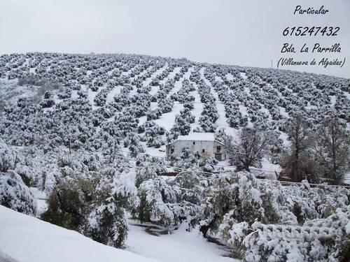 imagen 2 de Venta de casa rural en Villanueva de las Algaidas (Málaga)