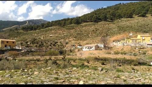 imagen 4 de Venta de casa de campo en La Albaida (Málaga)