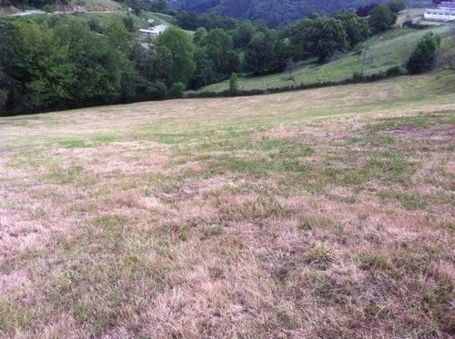 imagen 5 de Venta de casa rural en Cabranes (Asturias)