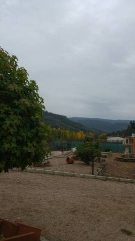 imagen 5 de Venta de casa rural con terreno en Villaverde de Guadialmar