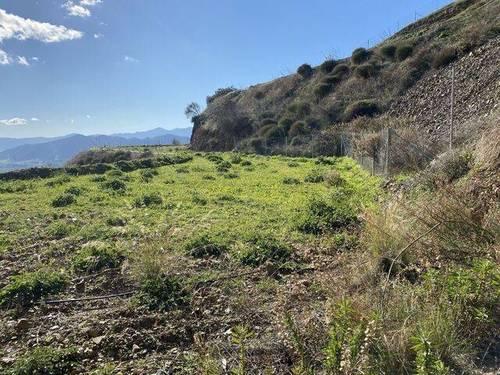 imagen 4 de Venta de finca rústica con vistas a la Bahía de Málaga