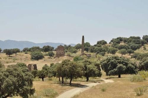 imagen 1 de Venta de finca de caza en Hoyo de Mestanza