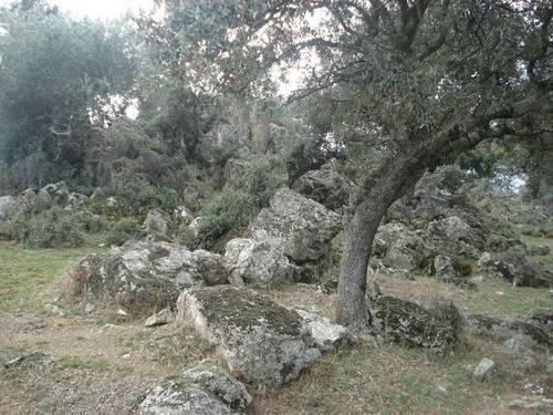 imagen 2 de Venta de finca de caza en Hoyo de Mestanza