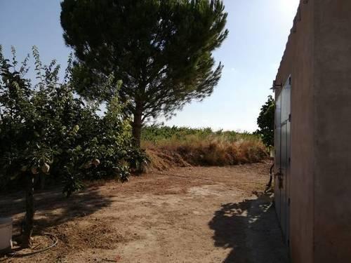 imagen 3 de Venta de terreno con casa en Albatana