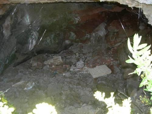 imagen 3 de Venta de finca en Galdar (Las Palmas)