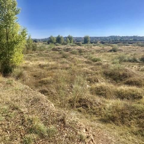 imagen 1 de Venta de finca en Aldea del Fresno (Madrid)