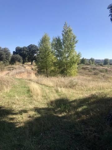imagen 3 de Venta de finca en Aldea del Fresno (Madrid)