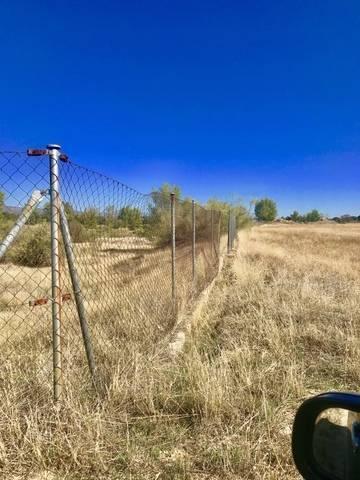 imagen 5 de Venta de finca en Aldea del Fresno (Madrid)