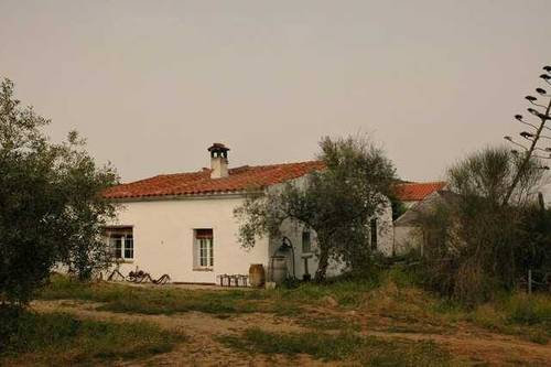 imagen 1 de Venta de finca con vivienda, luz y agua en Villaviciosa de Córdoba