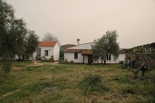 imagen 3 de Venta de finca con vivienda, luz y agua en Villaviciosa de Córdoba