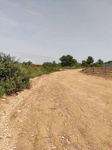 imagen 1 de Venta de finca rústica en Cheste (Valencia)