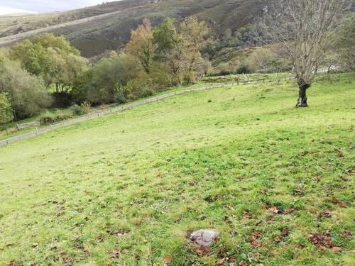 imagen 1 de Venta de finca rústica, pastizal en Cuerrias de Maza (Asturias)