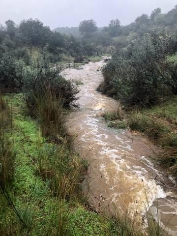 imagen 2 de Venta de finca rústica en Cáceres