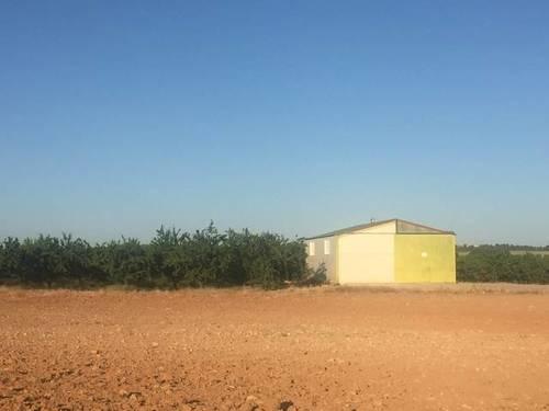 imagen 1 de Venta de finca de almendros en ecológico en Hellín (Albacete)
