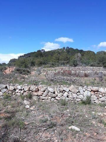 imagen 2 de Venta de terreno Xivert (Castellon)