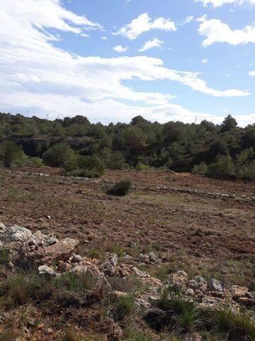 imagen 3 de Venta de terreno Xivert (Castellon)