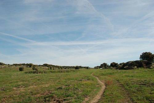 imagen 2 de Venta de finca agrícola y ganadera en Aldea del Cano (Cáceres)