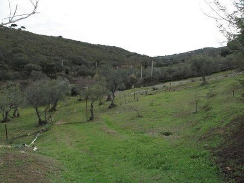 imagen 3 de Venta de casa de campo en Cáceres